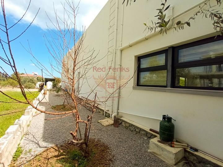 Вилла с 4 спальнями + индивидуальный дизайн + бассейн, Вилла в Кирения Северный Кипр